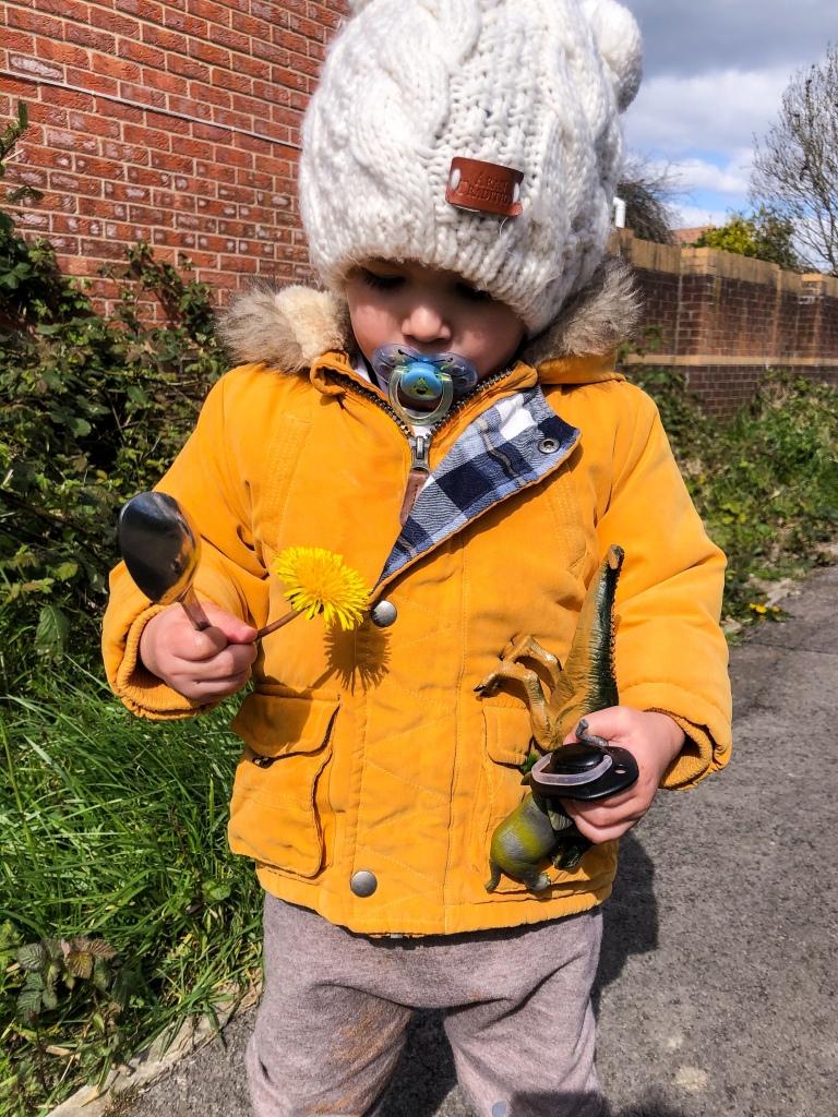 2 years old-spring-dandelions